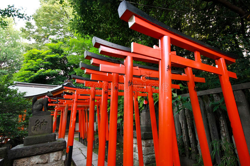 Download Torii tunnel stock photo. Image of corridor, lamp, passage - 30868968
