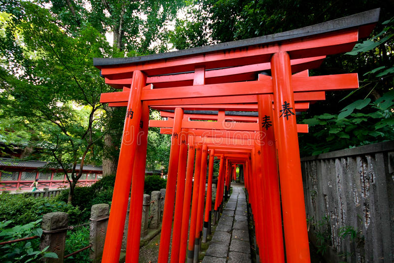 Download Torii tunnel in Tokyo stock photo. Image of temple, attractions - 30869046