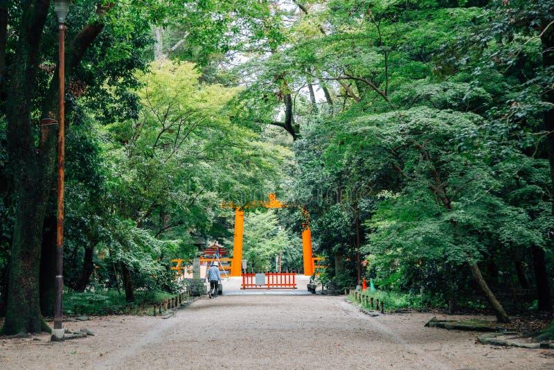 Toriipoort en bos van het Shimogamoheiligdom in Kyoto, Japan stock foto