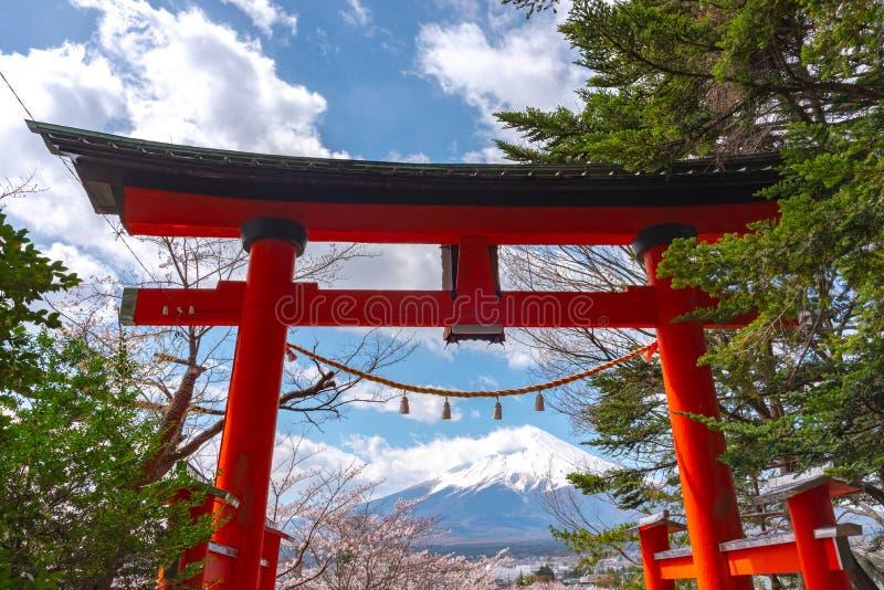 Toriipoort met MT van Onderstelfuji Fuji in kersenbloesems royalty-vrije stock fotografie