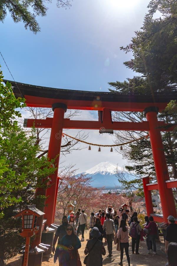 Toriipoort met MT van Onderstelfuji Fuji in kersenbloesems stock fotografie