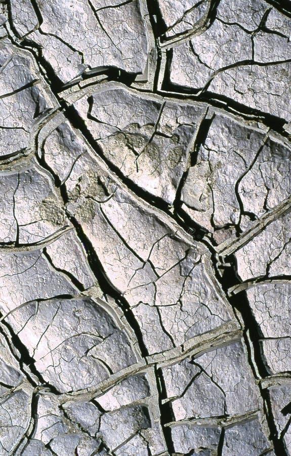 Torka Mud Arkivfoton