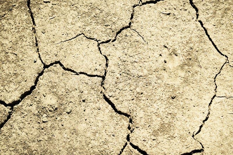 Torka naturkatastrof Torka sprucken jordbakgrund royaltyfria bilder