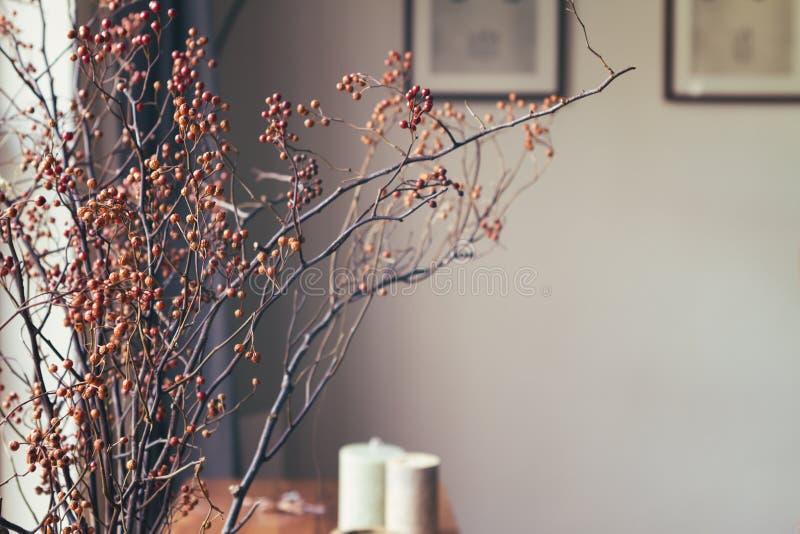 Torkad blom- ordning för bärpinne i hemmiljö arkivbild