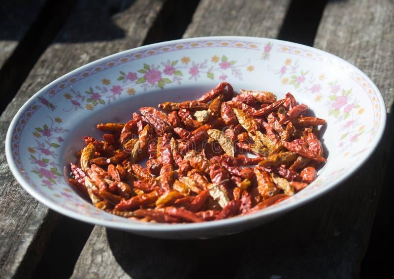 torkad chili arkivfoto