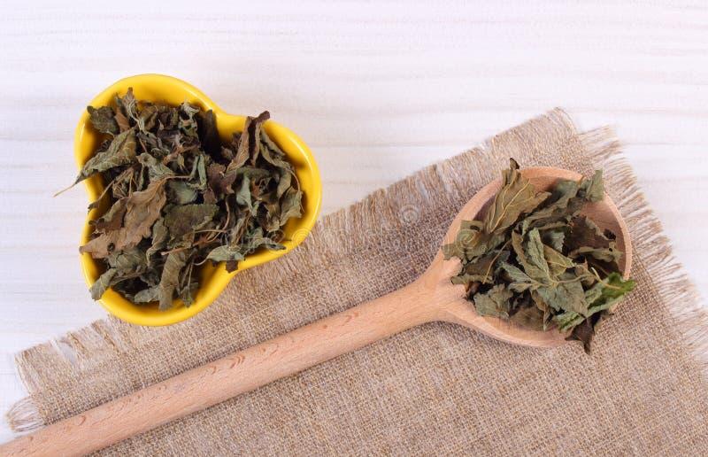 Torkad citronbalsam med skeden och bunken på trätabellen, herbalism royaltyfri fotografi