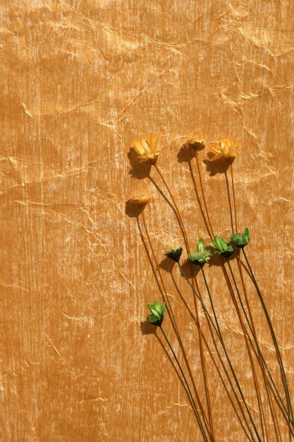 torkad färg blommar guld- målat papper stock illustrationer