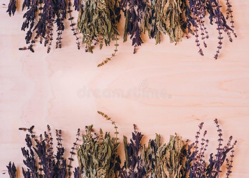 Torkad gräsplan och purpurfärgad basilika royaltyfri foto