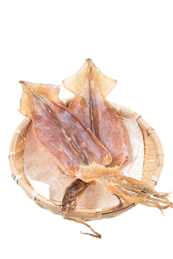 Torkad japansk tioarmad bläckfisk royaltyfri fotografi