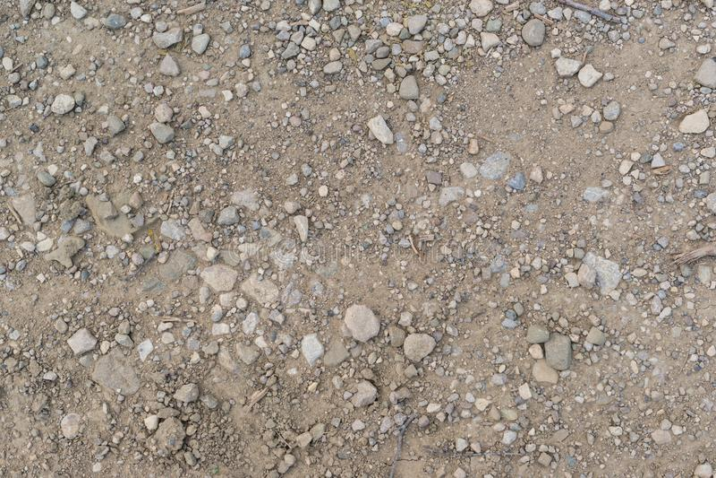 Torkad jordning med stenar arkivfoton