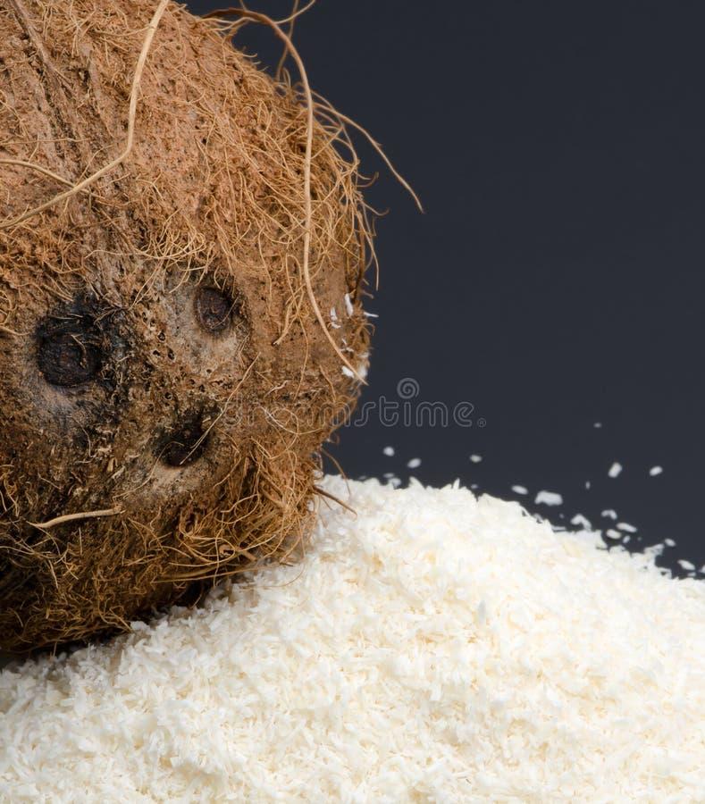 Torkad kokosnöt och hel kokosnöt royaltyfri fotografi
