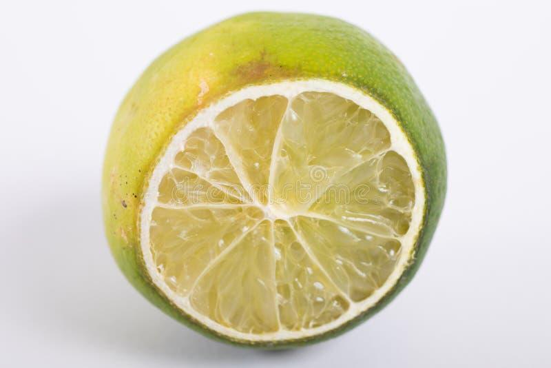 Torkad limefrukt i vit bakgrund arkivbilder