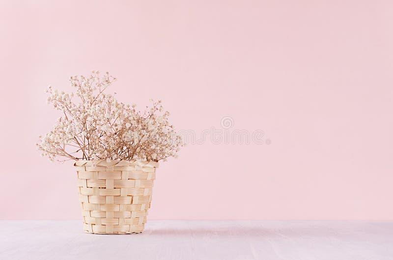 Torkad liten vit blommar i beige vide- korg på mjuk rosa pastellfärgad bakgrund Försiktig bakgrund för nytt ljus arkivbilder