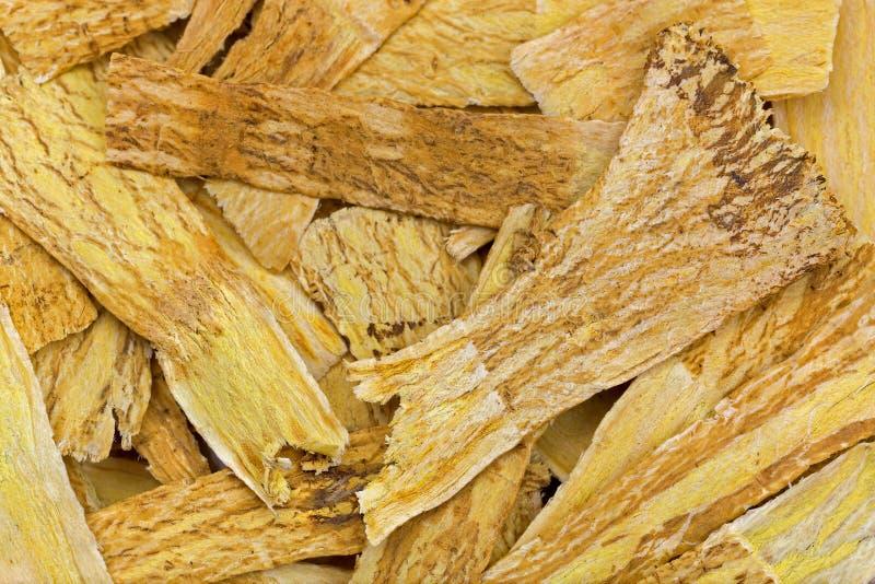 Torkad mongolisk milkvetch som är bekant som huang qà som används i traditiona royaltyfri foto