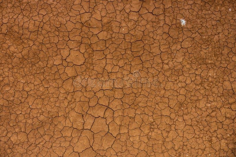 Torkad och knäckt jordjord arkivbild
