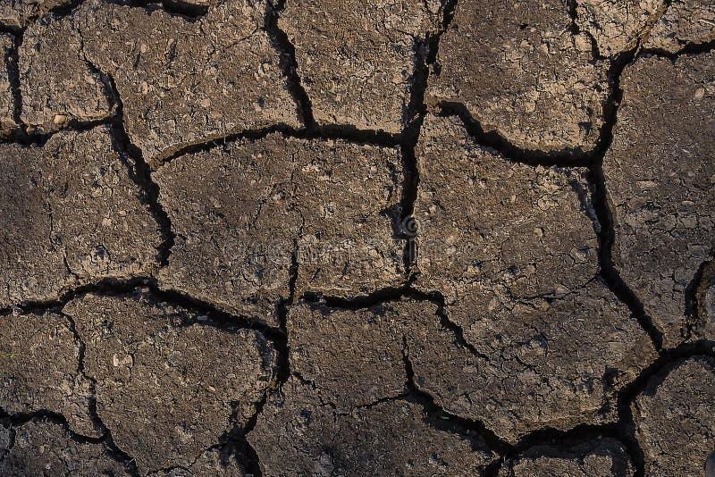 Torkad och knäckt jordtexturbakgrund för abstrakt begrepp royaltyfri foto