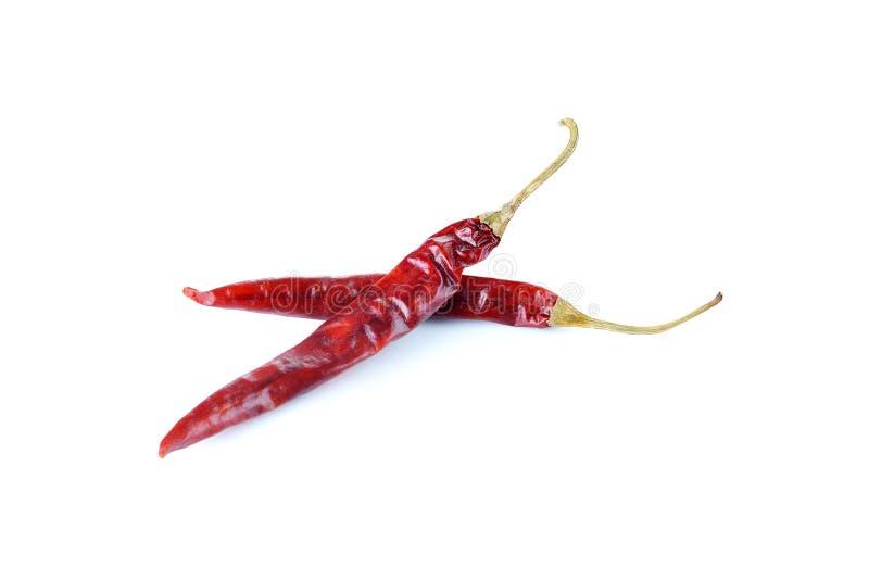 Torkad peppar för röd chili på en vit bakgrund arkivbilder