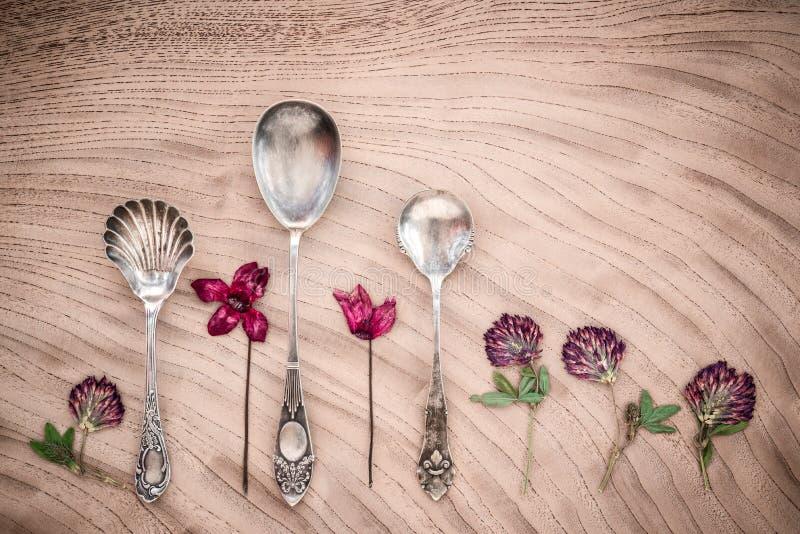 Torkad purpurfärgad blommor och tappning försilvrar skedar royaltyfri foto