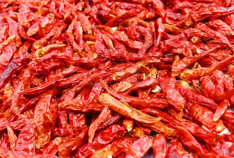 Torkad röd chili som en texturmatbakgrund, thailändsk matingredi arkivbild