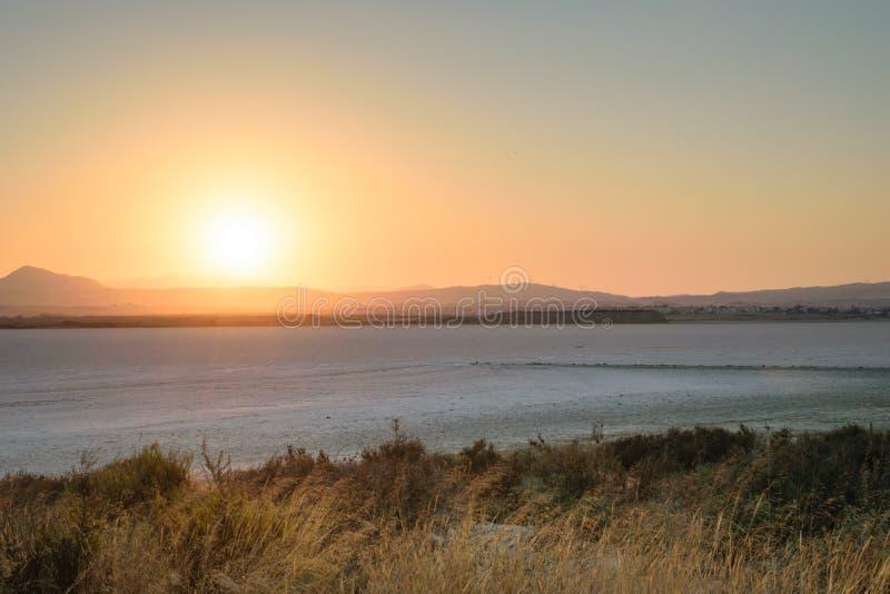 Torkad salt sjö i Larnaca, Cypern royaltyfri fotografi