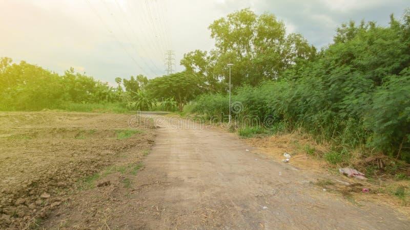 Torkad smuts i landsväg arkivbild