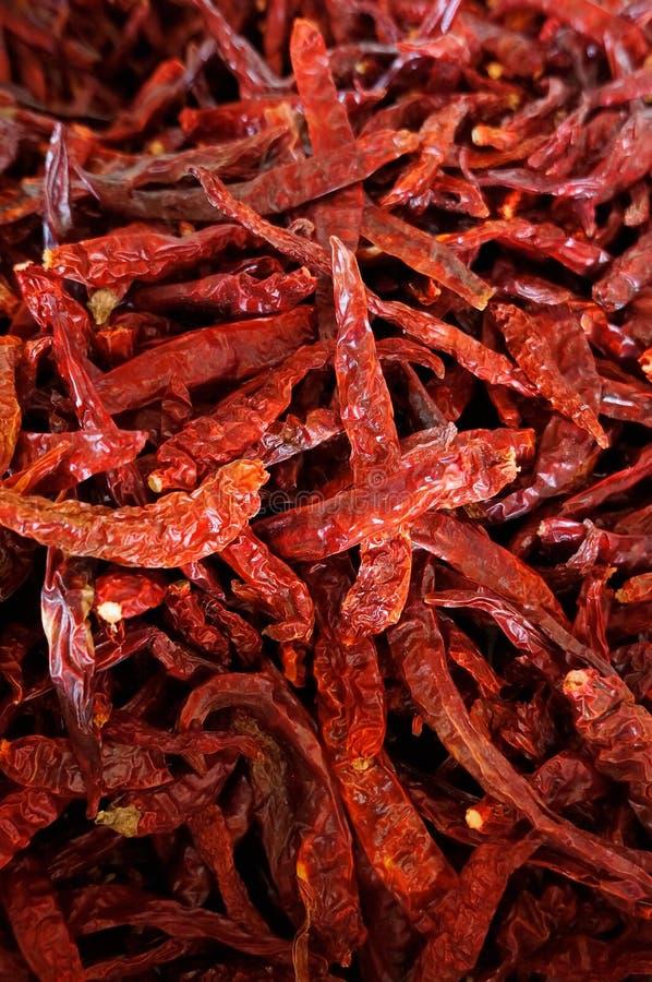 Torkad varm röd peppar royaltyfri bild