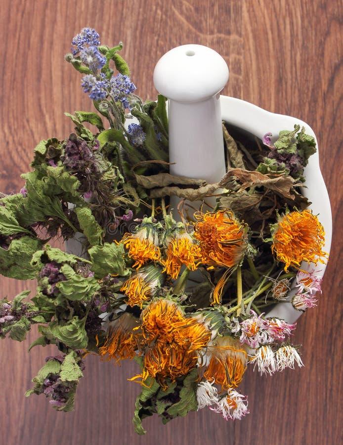 Torkade örter och blommor i vit mortel, herbalism, garnering royaltyfri foto