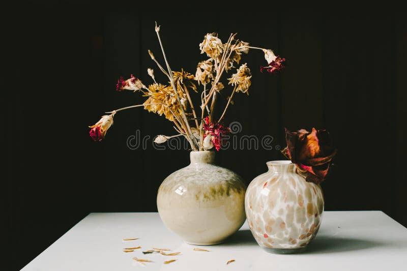 Torkade blommavaser fotografering för bildbyråer