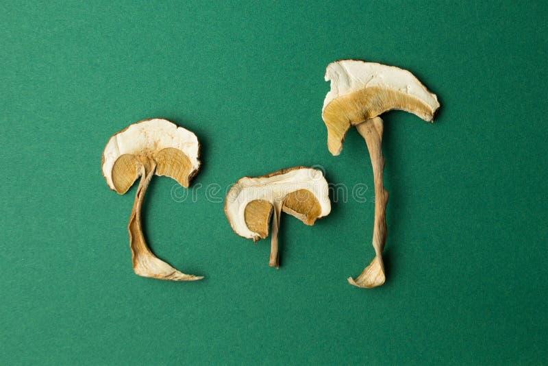 Torkade champinjoner som isoleras p? en gr?n bakgrund Hallucinogna champinjoner royaltyfria bilder