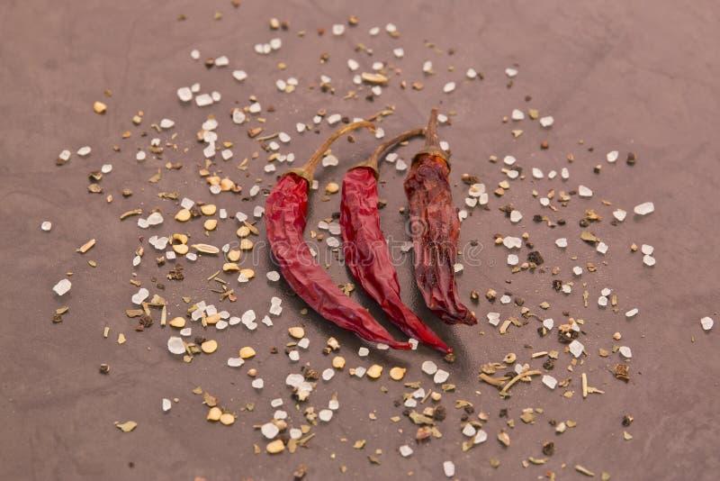 Torkade chilies och kryddor royaltyfria bilder