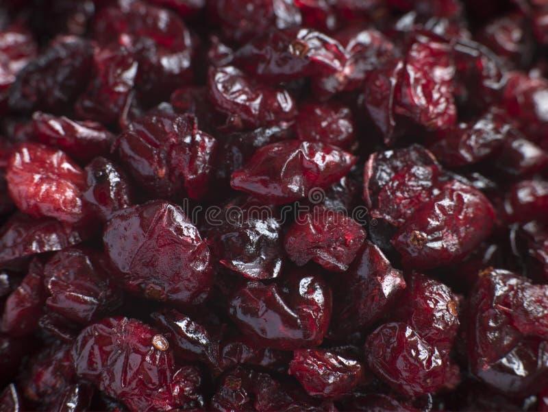 torkade cranberries arkivfoton
