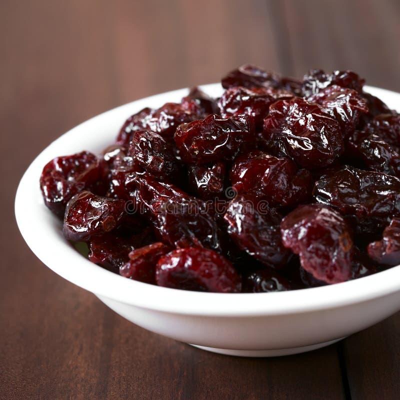 Torkade cranberries royaltyfri fotografi