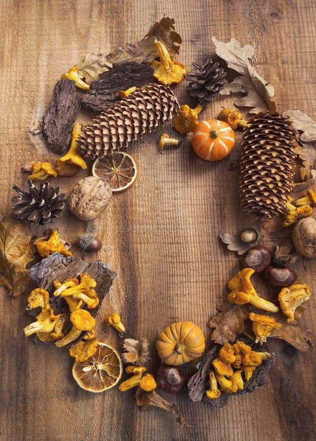 Torkade den dekorativa ramen för hösten med champinjoner, ekollonar, pumpor, l royaltyfri foto
