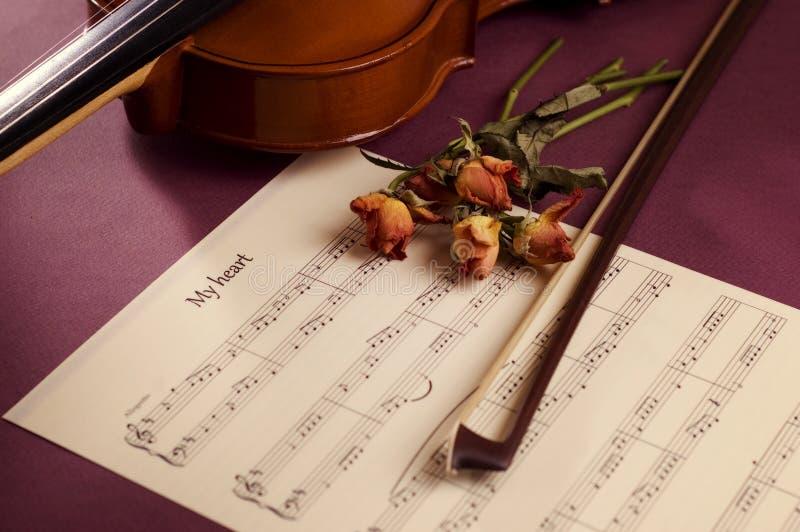 torkade musikro sheet fiolen arkivbild