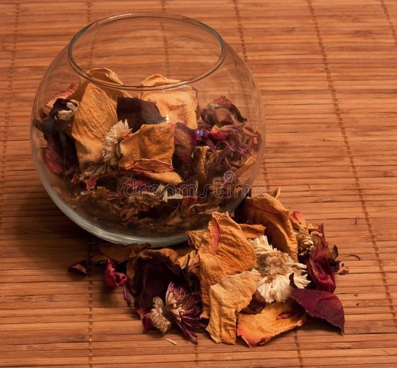 torkade petals fotografering för bildbyråer