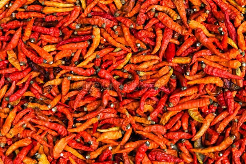 Torkade röda Chili Pepper, Laos royaltyfria bilder
