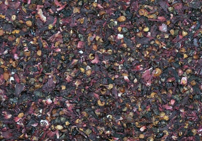 Torkade Rose Hip Tea Texture arkivfoto