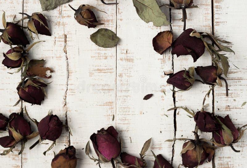 Torkade rosor på träparkettplankor royaltyfria foton