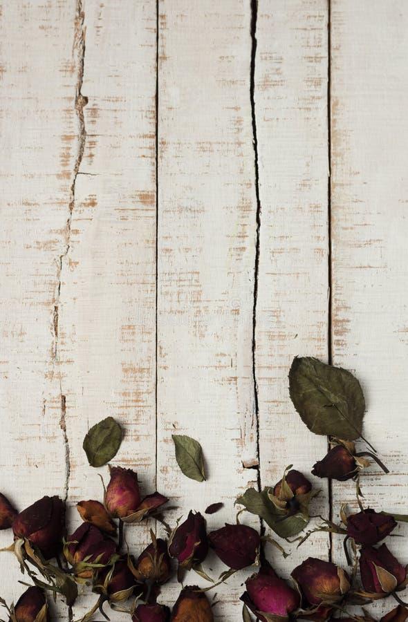 Torkade rosor på vita träparkettplankor royaltyfri bild