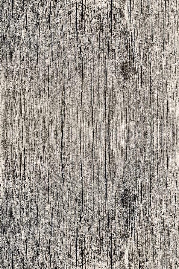 Torkar gammalt poröst för Wood texturbakgrund sprucket tömmer plankan för tappning för åldrig för timmer för grov yttersida färg  arkivbild