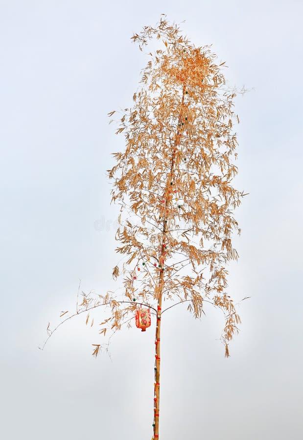 Torkat bambuträd som är dekorativt med den färgrika ljusa kulan och den kinesiska lyktan mot vit himmelbakgrund arkivbild