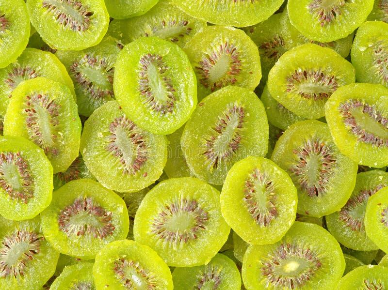 torkat - fruktkiwi royaltyfri bild