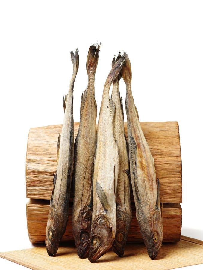 Torkat lyrtorsk och journalträ arkivbild