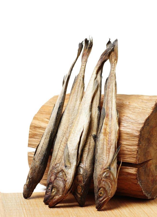 Torkat lyrtorsk och journalträ arkivfoton