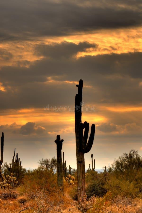 Tormenta de desierto que se acerca a 2 foto de archivo