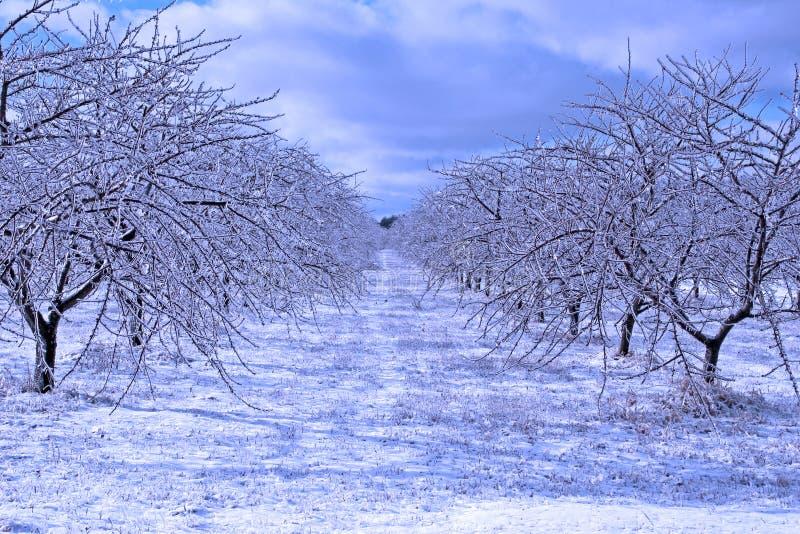 Tormenta de hielo fotos de archivo