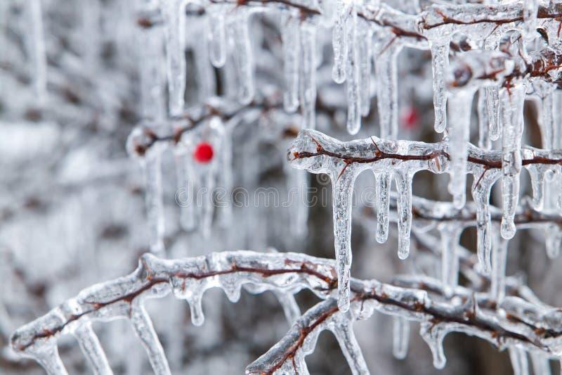 Tormenta de hielo imagenes de archivo