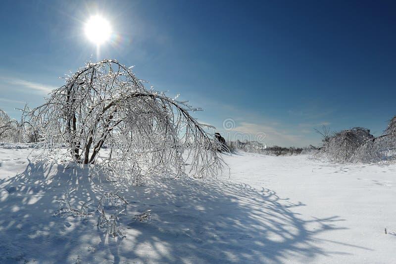 Tormenta de hielo foto de archivo