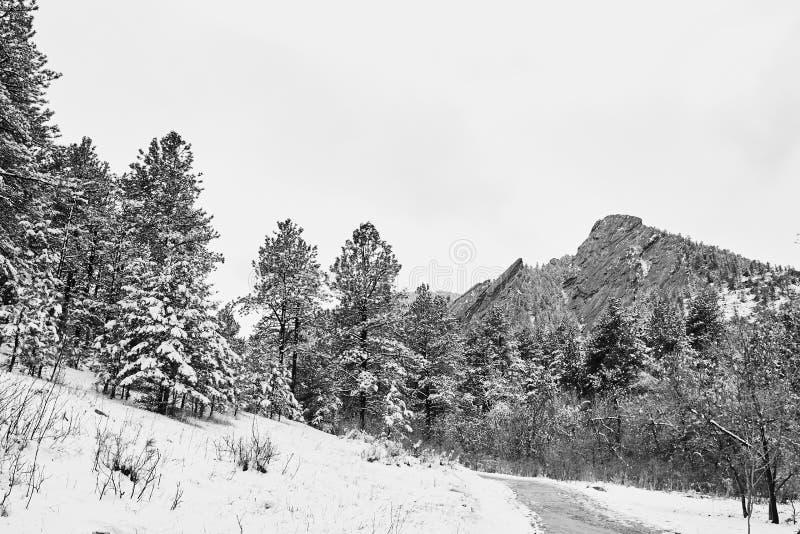 Tormenta de la nieve de la primavera en el parque de Chautauqua fotografía de archivo libre de regalías