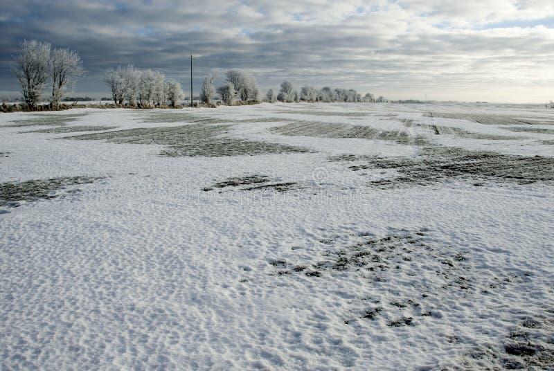 Tormenta de la nieve que sube imágenes de archivo libres de regalías